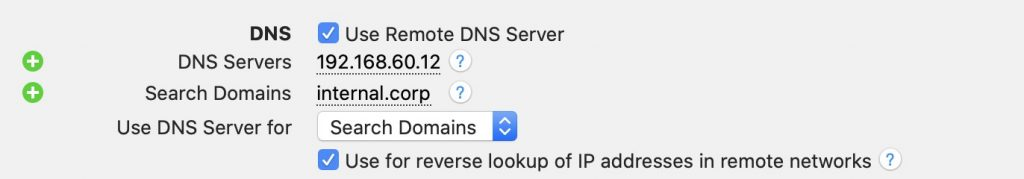 Remote DNS settings in VPN Tracker 365